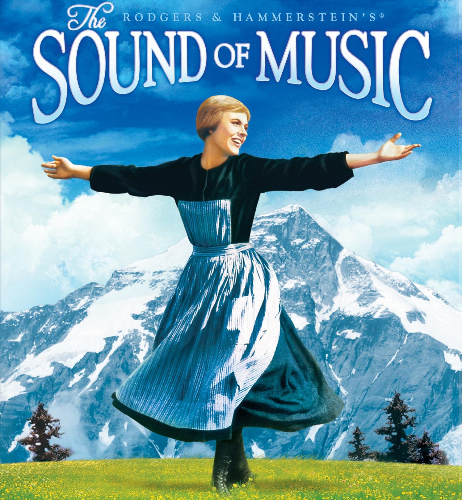 the sound of music An austrian maiden must choose between secular and religious life when her convent sends her to act as nanny to the seven children of a stern navy captain she falls.
