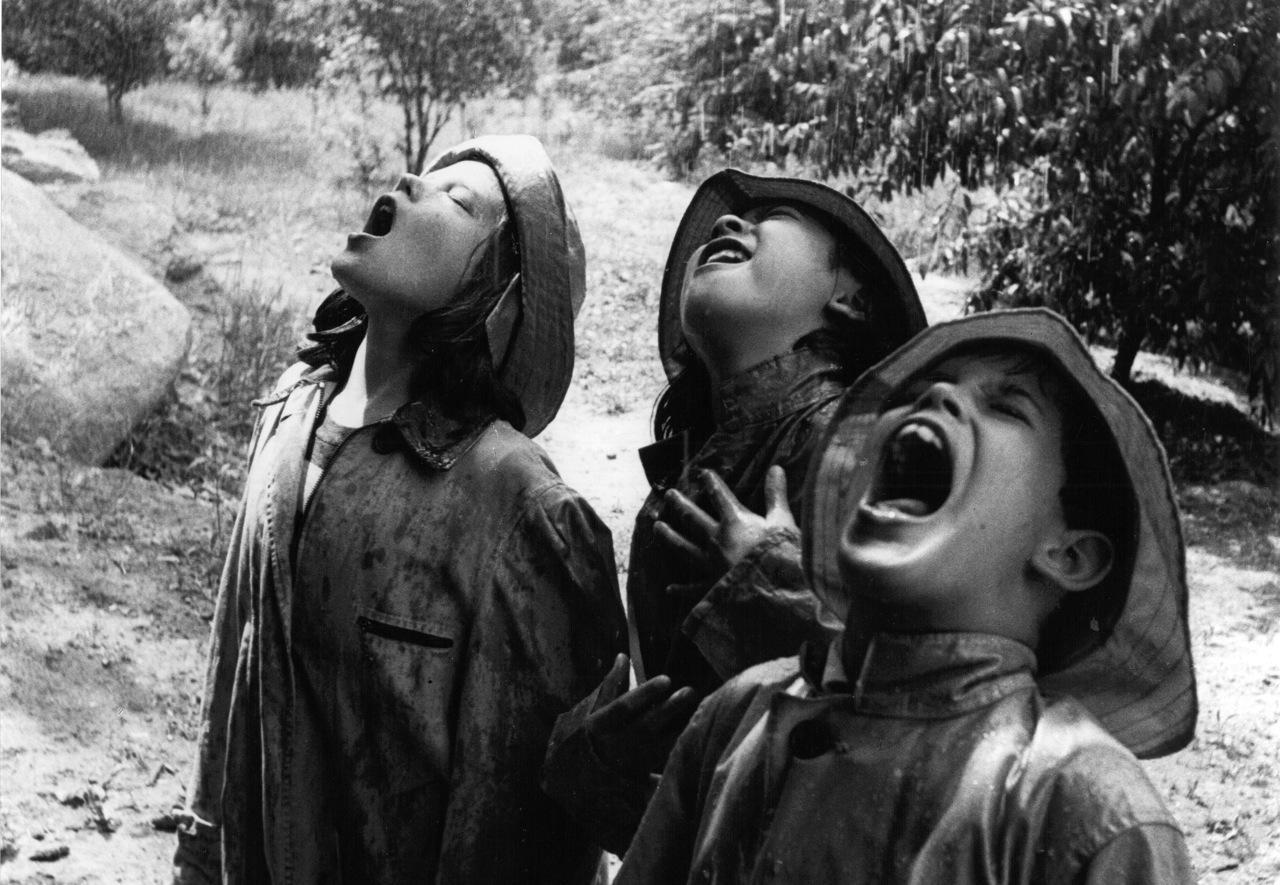 Cantando Bajo La Lluvia Singin In The Rain La Canci 243 N