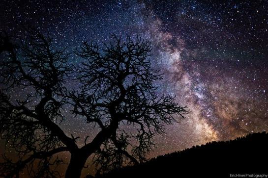 Cielo estrellado 2