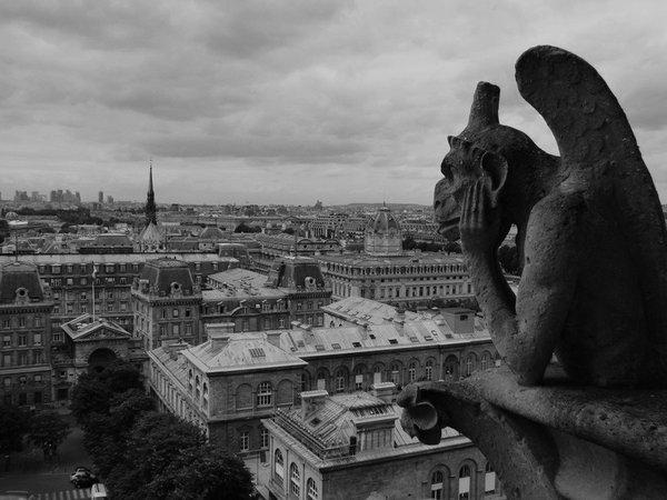 París. Vista desde lo alto de Notre Dame