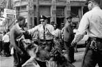 Un joven de 17 años es atacado por un perro policía en Birmingham (Alabama, Estados Unidos) por desafiar la ordenanza que prohibía las concentraciones de negros en las calles (3 de mayo de 1963).